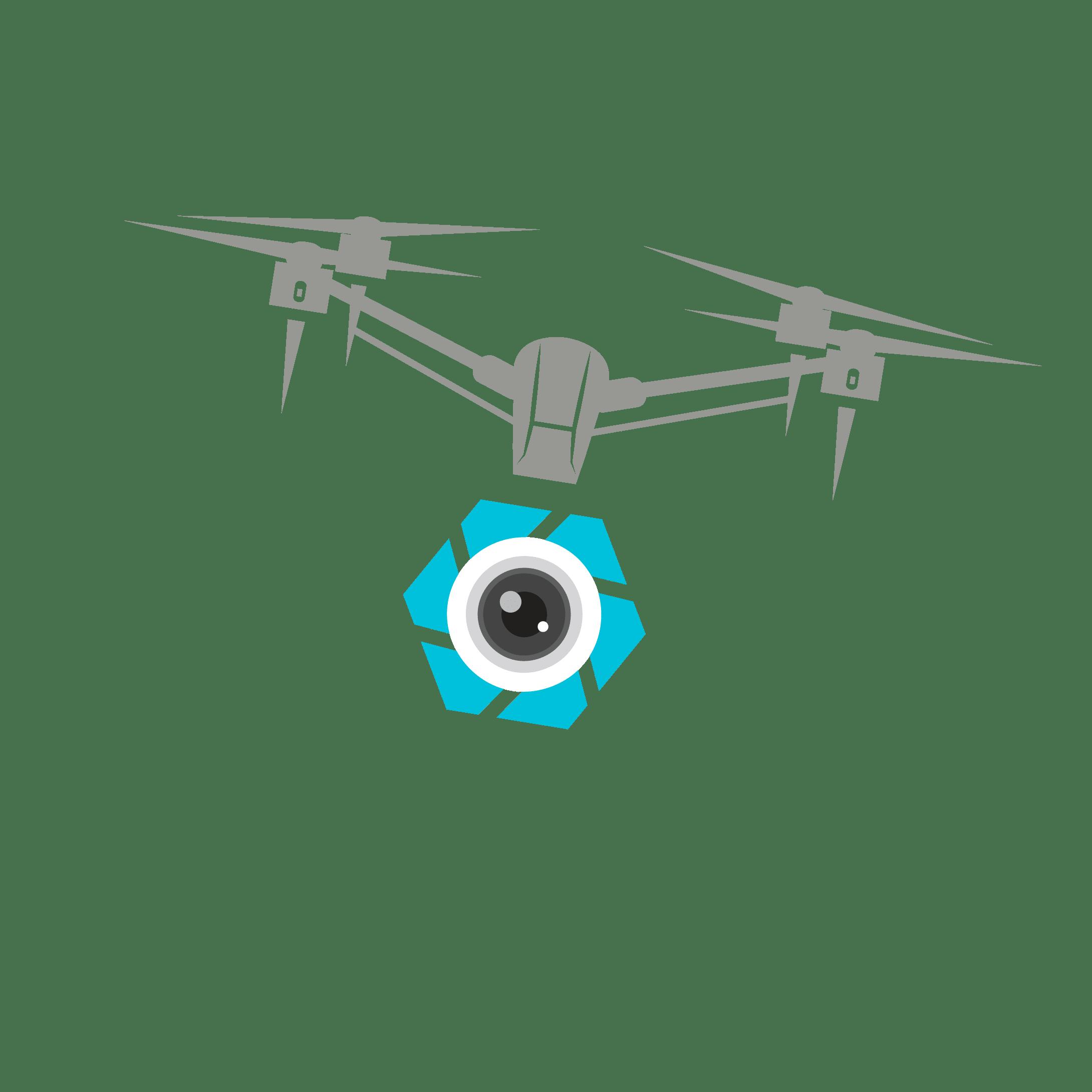 Drone Life Aerials